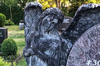 Friedhof Krummesse - Copyright: Katja Launer